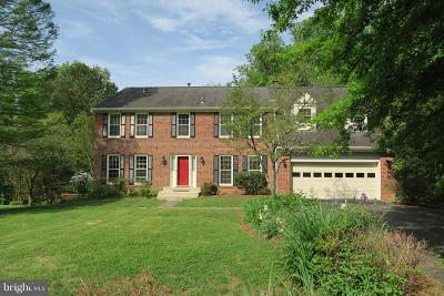 Vienna Single Family Home For Sale: 10295 Dunn Meadow Road