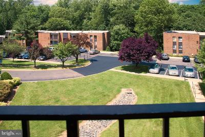 Annandale Rental For Rent: 7802 Dassett Court #302