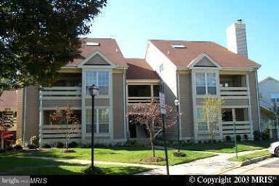 Alexandria Rental For Rent: 6603 Jupiter Hills Circle #E