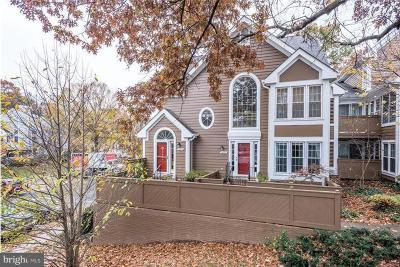 Reston Rental For Rent: 1442 Church Hill Place
