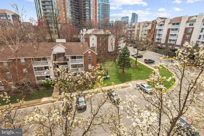 McLean Condo For Sale: 1504 Lincoln Way #409