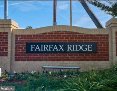 Fairfax, Fairfax Station Condo For Sale: 11399 Aristotle Drive #11-204