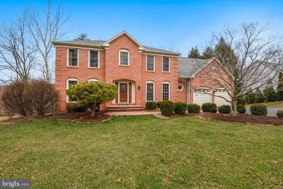 Oakton Single Family Home For Sale: 10672 Oakton Ridge Court
