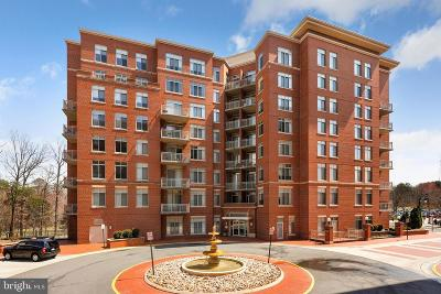 Fairfax, Fairfax Station Condo For Sale: 4480 Market Commons Drive #706