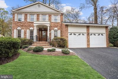 Mclean Single Family Home For Sale: 1350 Snow Meadow Lane