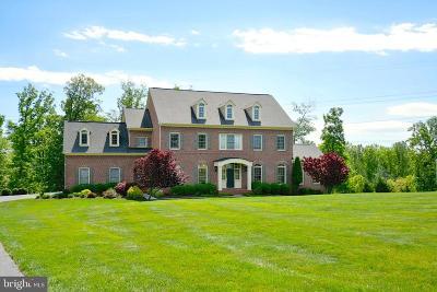 Woodbridge, Dumfries, Lorton Single Family Home For Sale: 9319 Occoquan Overlook Drive