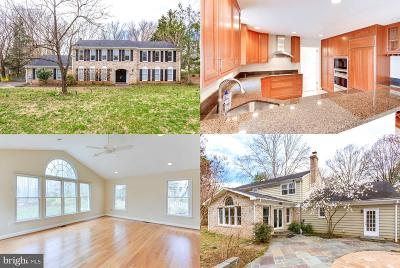 McLean Single Family Home For Sale: 6900 Lupine Lane