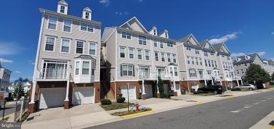 Herndon Condo For Sale: 13668 Venturi Ln