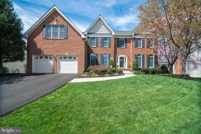 Reston, Herndon Single Family Home For Sale: 13282 Holly Meadow Lane