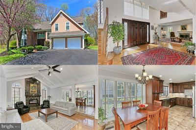 Lorton Single Family Home For Sale: 8934 Cross Chase Circle