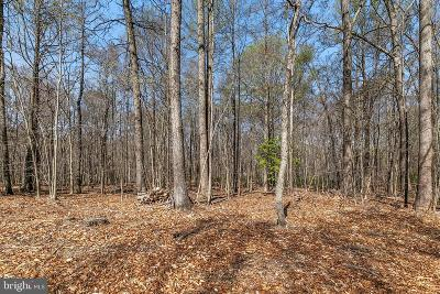 Fairfax Station Residential Lots & Land For Sale: 10925 Hampton Road