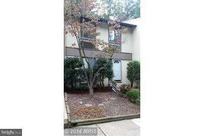 Reston Rental For Rent: 2238 Lofty Heights Place