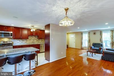 Herndon Single Family Home For Sale: 1549 Hiddenbrook Drive