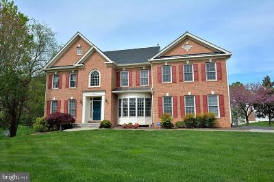 Oakton Single Family Home For Sale: 11012 Lance Lane