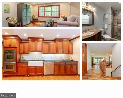 Centreville, Clifton Single Family Home For Sale: 11905 Chapel Road
