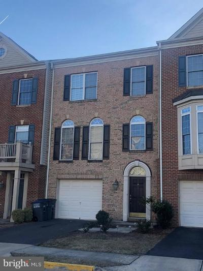 Washington County, Montgomery County, Fairfax County Rental For Rent: 5329 Cupids Dart Drive