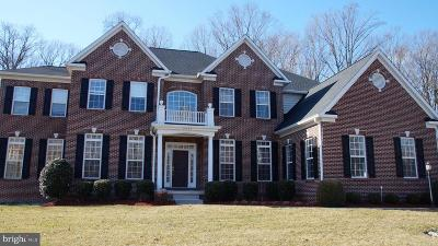 Fairfax Station Single Family Home For Sale: New Road #10502