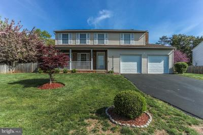 Fairfax County Single Family Home For Sale: 1322 Forty Oaks Drive