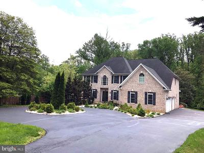 Vienna Single Family Home For Sale: 121 Kingsley Road SE