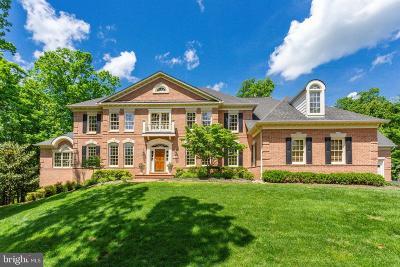 Oakton Single Family Home For Sale: 3530 Saint Augustine Lane
