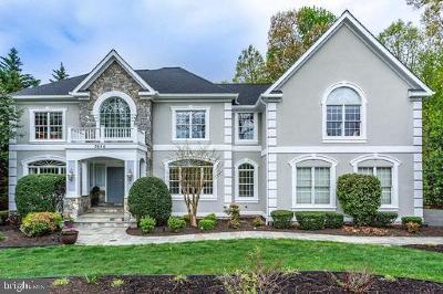 Oakton Single Family Home For Sale: 3686 Waples Crest Court