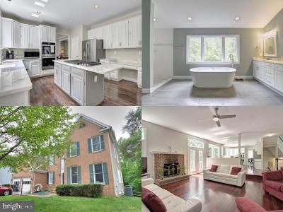 Centreville, Clifton Single Family Home For Sale: 13615 Yellow Poplar Drive