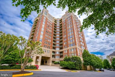 Reston Condo For Sale: 11776 Stratford House Place #207