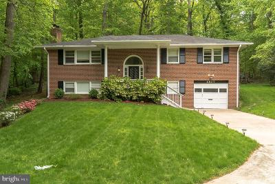 Annandale Single Family Home For Sale: 6807 Winter Lane