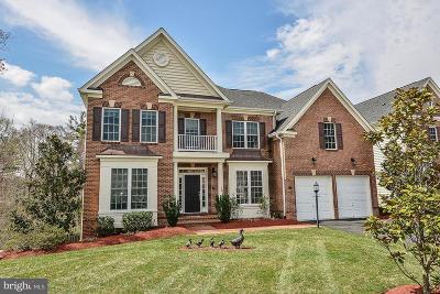 Alexandria Single Family Home For Sale: 4556 Magnolia Manor Way