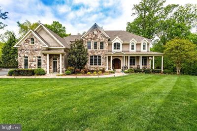 Oakton Single Family Home For Sale: 3195 Ariana Drive