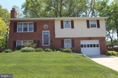 Centreville, Clifton Single Family Home For Sale: 14821 Wood Home Road