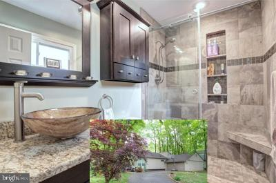Springfield, Burke Single Family Home For Sale: 9315 Raintree Road