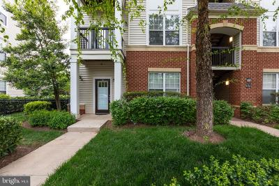 Fairfax, Fairfax Station Condo For Sale: 11321 Aristotle Drive #3-101