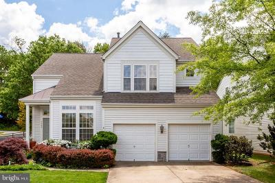 Reston Single Family Home For Sale: 2451 Arctic Fox Way