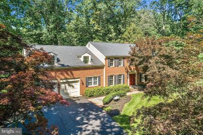 Reston Single Family Home For Sale: 11007 Birdfoot Court