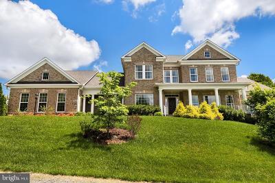 Oakton Single Family Home For Sale: 2989 Wilson Avenue