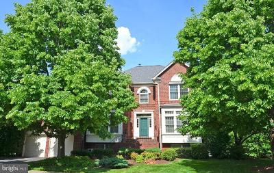 Centreville Single Family Home For Sale: 6203 Farnam Cluster
