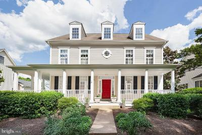 Reston, Herndon Single Family Home For Sale: 894 Station Street