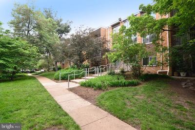 Falls Church Condo For Sale: 2904 Kings Chapel Road #5