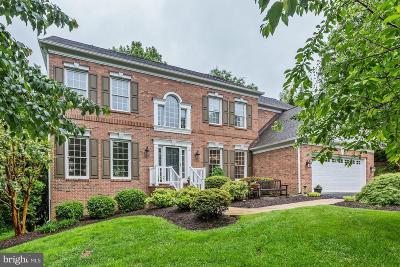 Oakton Single Family Home For Sale: 11731 Saddle Crescent Circle
