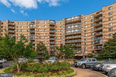 McLean Condo For Sale: 8370 Greensboro Drive #206