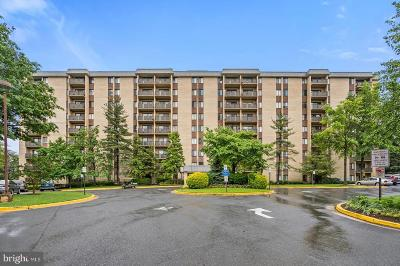 Annandale, Falls Church Condo For Sale: 3101 S Manchester Street #820