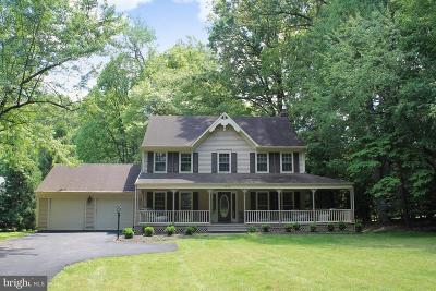 Oakton Single Family Home For Sale: 2820 Center Ridge Drive