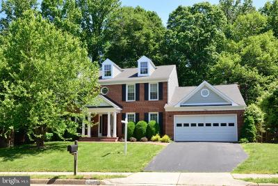 Centreville, Clifton Single Family Home For Sale: 13902 Marblestone Drive