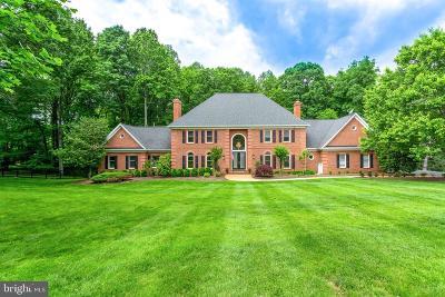 Oakton Single Family Home For Sale: 11104 Prince Edward Court