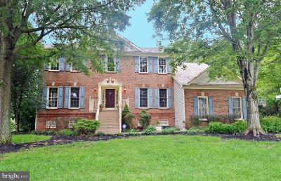 Centreville, Clifton Single Family Home For Sale: 15555 Smithfield Place