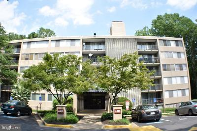 Annandale Condo For Sale: 4415 Briarwood Court N #41