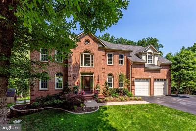 Reston, Herndon Single Family Home For Sale: 1298 Stamford Way