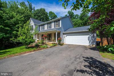 Alexandria Single Family Home For Sale: 4916 Lincoln Avenue