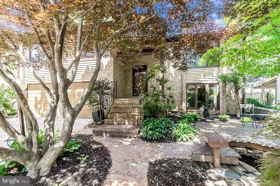 Vienna Single Family Home For Sale: 9554 Pine Bough Place